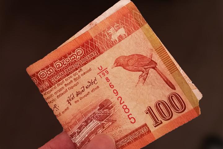 100 Srilankan Rupee